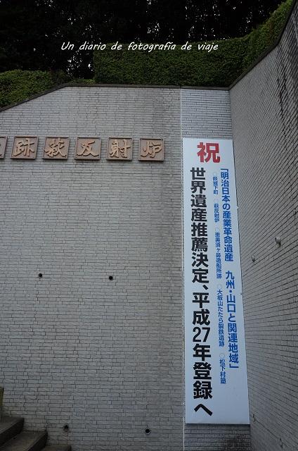 DSC04917.jpg